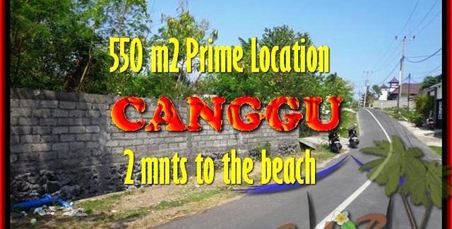Exotic LAND FOR SALE IN Canggu Batu Bolong TJCG159