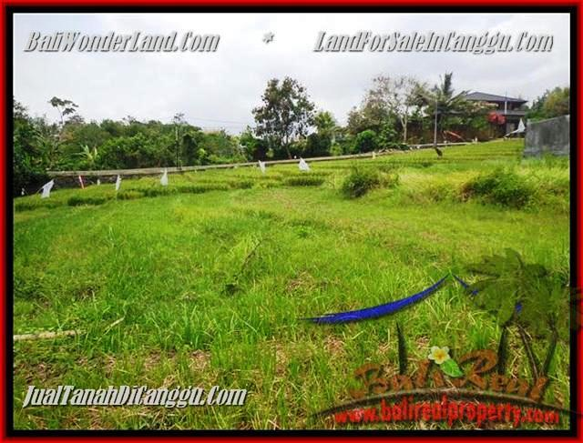 FOR SALE Affordable PROPERTY 1.000 m2 LAND IN CANGGU BALI TJCG161
