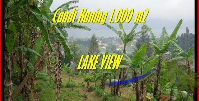 Exotic PROPERTY TABANAN BALI 1.000 m2 LAND FOR SALE TJTB181