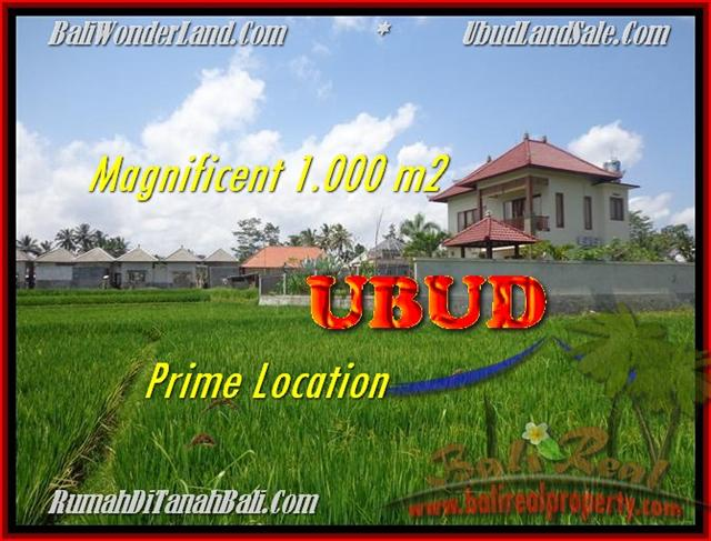 Beautiful 1.000 m2 LAND SALE IN UBUD TJUB445