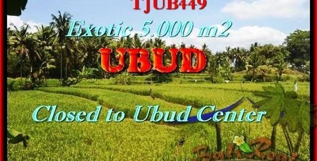 Magnificent 5.000 m2 LAND IN UBUD FOR SALE TJUB449