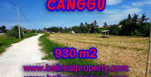 Beautiful PROPERTY 930 m2 LAND SALE IN CANGGU TJCG146