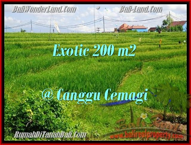 Exotic PROPERTY 200 m2 LAND IN CANGGU FOR SALE TJCG170