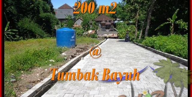 LAND SALE IN CANGGU BALI TJCG172