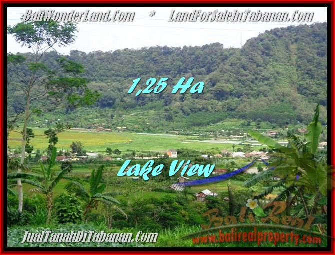 Magnificent PROPERTY LAND IN TABANAN FOR SALE TJTB188