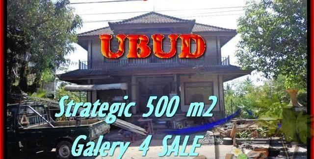Beautiful 500 m2 LAND SALE IN UBUD TJUB438