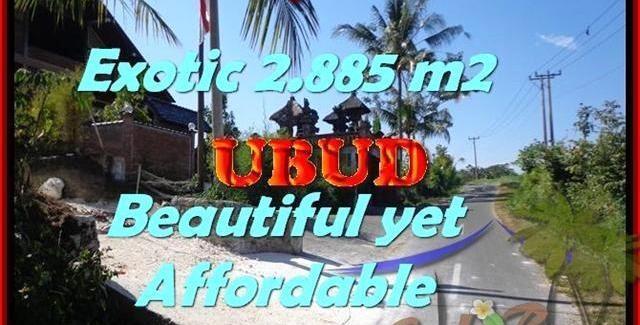 Exotic PROPERTY 2.885 m2 LAND FOR SALE IN UBUD BALI TJUB442