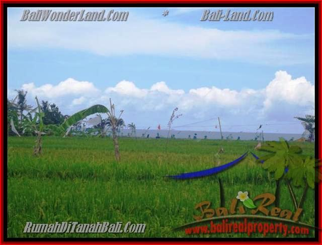 Exotic PROPERTY LAND SALE IN Canggu Cemagi TJCG140