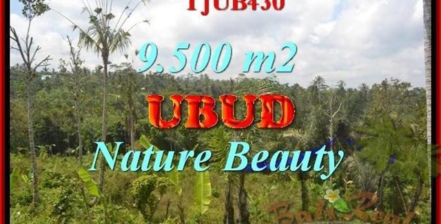 Exotic PROPERTY 9,500 m2 LAND IN UBUD BALI FOR SALE TJUB430