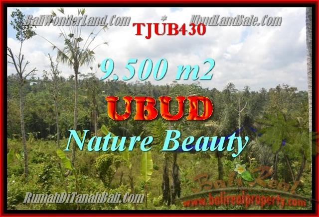 Exotic PROPERTY 9,500 m2 LAND IN UBUD BALI FOR SALE TJUB430