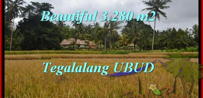 Magnificent PROPERTY UBUD BALI 3,280 m2 LAND FOR SALE TJUB463