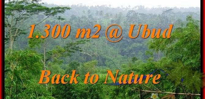 Beautiful 1,300 m2 LAND FOR SALE IN UBUD BALI TJUB481