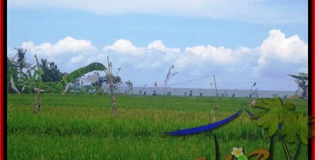 FOR SALE Magnificent PROPERTY LAND IN Canggu Cemagi BALI TJCG140