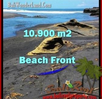 Exotic PROPERTY 10,900 m2 LAND SALE IN TABANAN BALI TJTB199