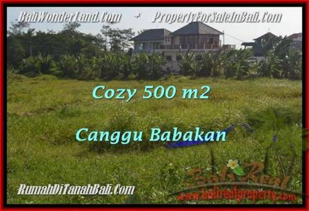 Exotic PROPERTY 500 m2 LAND IN Canggu Batu Bolong  FOR SALE TJCG179