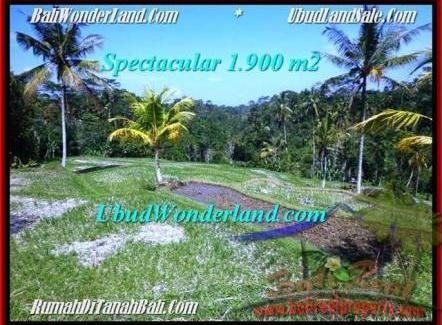 Beautiful UBUD BALI 1,900 m2 LAND FOR SALE TJUB505