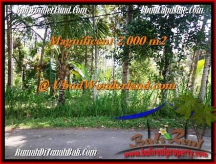 Beautiful UBUD BALI 2,000 m2 LAND FOR SALE TJUB506