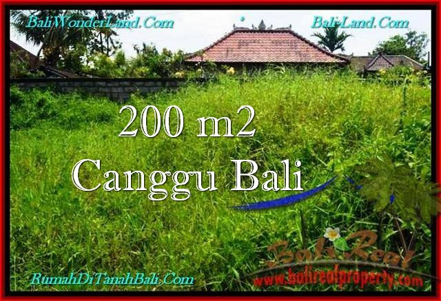 Magnificent PROPERTY 200 m2 LAND SALE IN Canggu Pererenan TJCG190