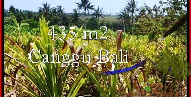 Magnificent LAND SALE IN Canggu Pererenan TJCG196