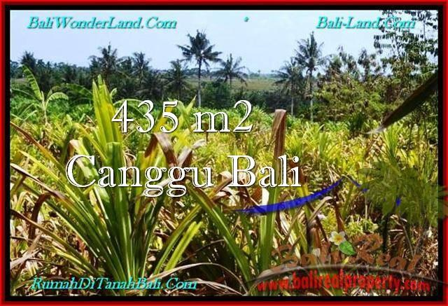 Magnificent PROPERTY Canggu Pererenan 435 m2 LAND FOR SALE IN BALI TJCG196