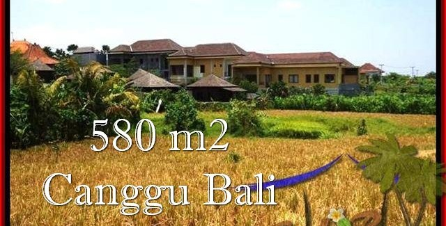 FOR SALE Beautiful LAND IN Canggu Pererenan TJCG197