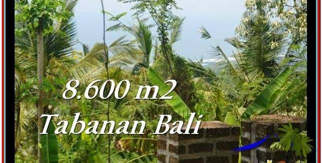 Beautiful PROPERTY 8,600 m2 LAND IN Tabanan Selemadeg FOR SALE TJTB235