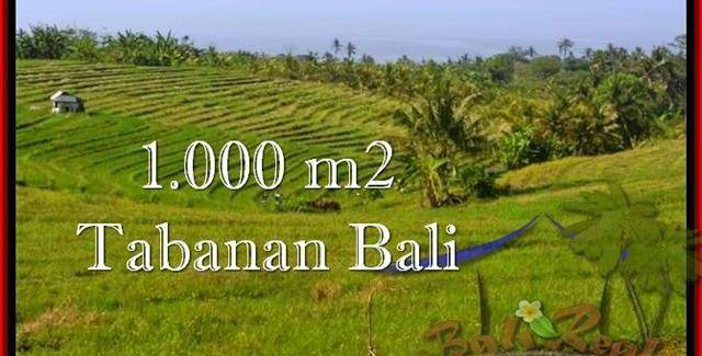 Magnificent PROPERTY 1,000 m2 LAND FOR SALE IN Tabanan Selemadeg TJTB237