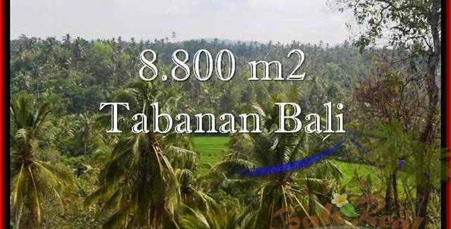 LAND IN Tabanan Selemadeg BALI FOR SALE TJTB238