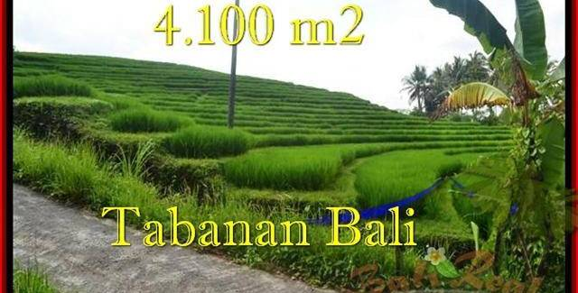 Affordable Tabanan Selemadeg BALI LAND FOR SALE TJTB239