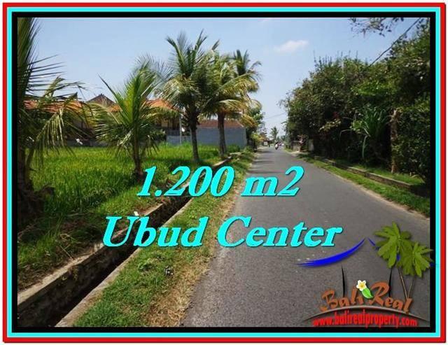 Beautiful PROPERTY LAND SALE IN UBUD TJUB525