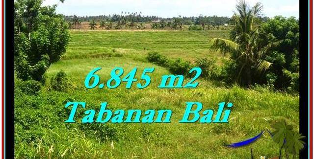Beautiful PROPERTY 6,845 m2 LAND IN Tabanan Selemadeg FOR SALE TJTB245