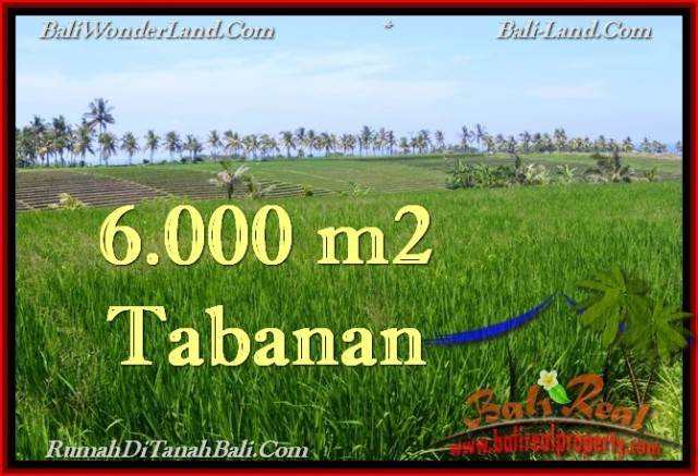 Beautiful PROPERTY 6,000 m2 LAND IN Tabanan Selemadeg FOR SALE TJTB267
