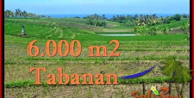 LAND IN Tabanan Selemadeg BALI FOR SALE TJTB268