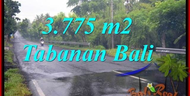Exotic 3,775 m2 LAND FOR SALE IN TABANAN BALI TJTB271
