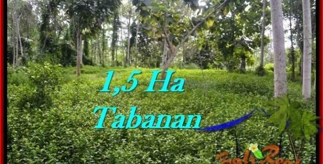 Beautiful TABANAN BALI 15,550 m2 LAND FOR SALE TJTB272