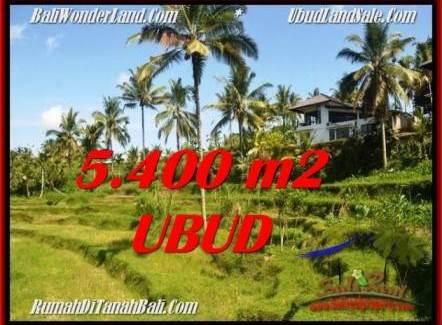 LAND SALE IN Ubud Tegalalang BALI TJUB550