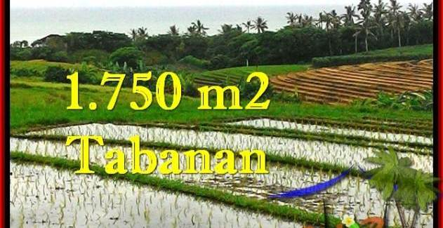 Affordable PROPERTY 1,775 m2 LAND SALE IN TABANAN BALI TJTB264
