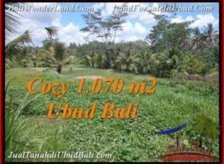 Magnificent PROPERTY 1,070 m2 LAND IN Sentral Ubud FOR SALE TJUB536