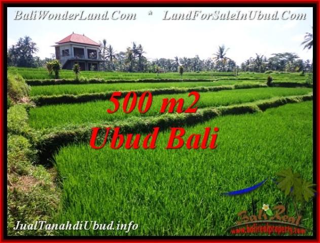 Affordable 500 m2 LAND IN UBUD BALI FOR SALE TJUB543