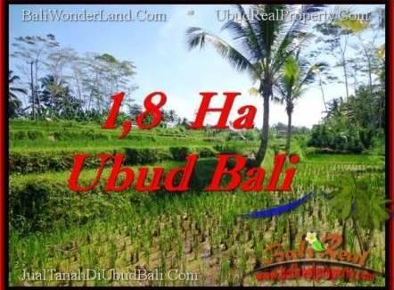 Beautiful LAND IN UBUD FOR SALE TJUB553