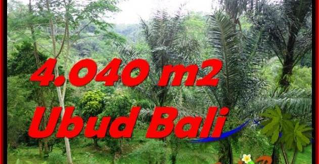 FOR SALE 4,040 m2 LAND IN UBUD TJUB555
