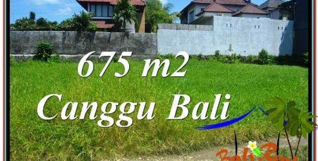 LAND IN Canggu Brawa BALI FOR SALE TJCG200