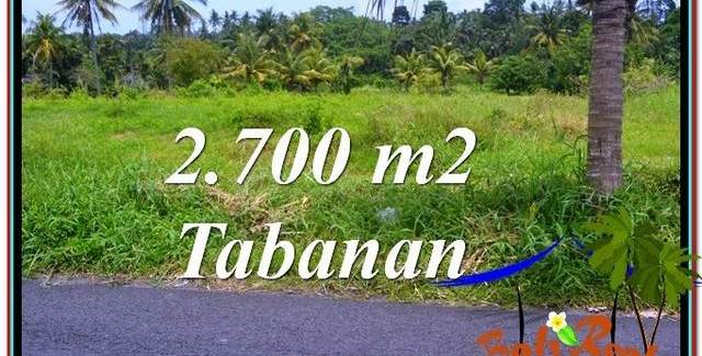 Beautiful PROPERTY LAND IN Tabanan Kerambitan BALI FOR SALE TJTB301