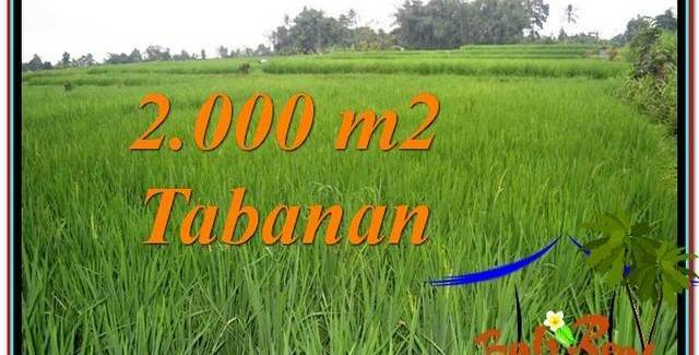 FOR SALE Magnificent PROPERTY LAND IN Tabanan Penebel TJTB303