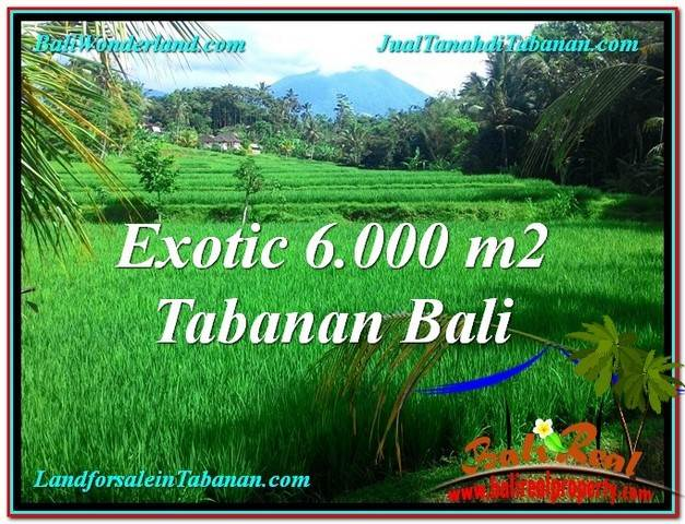Magnificent 6,000 m2 LAND IN TABANAN BALI FOR SALE TJTB306