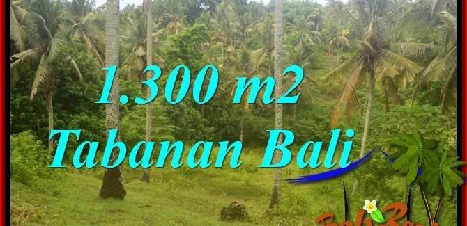 FOR SALE Beautiful PROPERTY LAND IN Tabanan Selemadeg BALI TJTB314