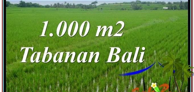 Beautiful PROPERTY LAND FOR SALE IN Tabanan Kerambitan BALI TJTB307