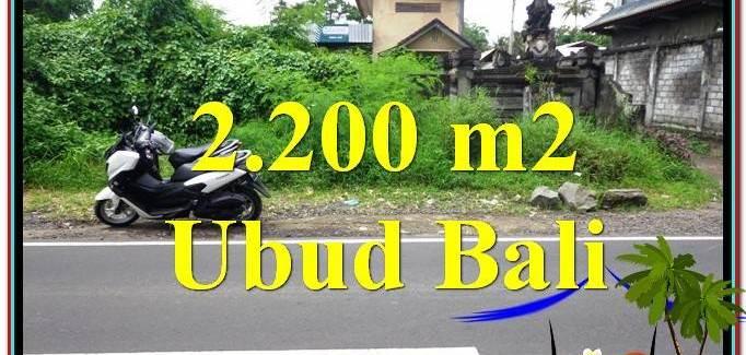 Magnificent 2,200 m2 LAND SALE IN UBUD BALI TJUB565