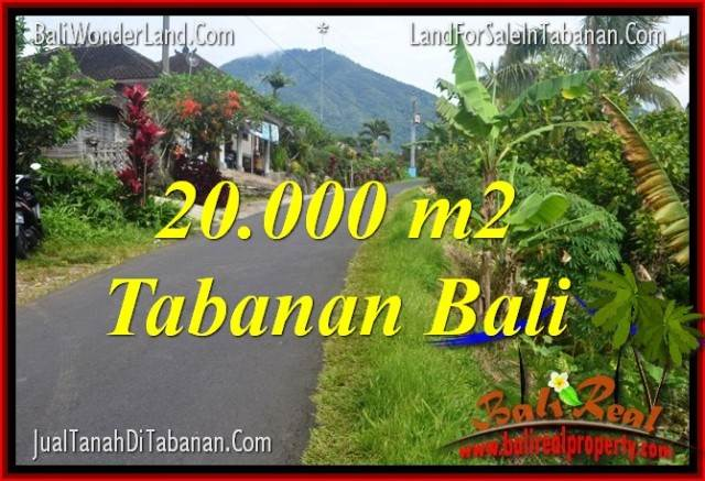 Affordable PROPERTY 20,000 m2 LAND IN TABANAN BALI FOR SALE TJTB315