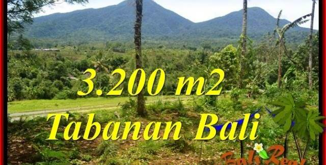 Magnificent LAND SALE IN TABANAN BALI TJTB319